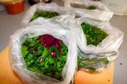 Nagyobb a szalmonellaveszély a csomagolt salátánál