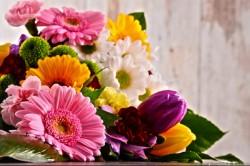 Boldog Nemzetközi Nőnapot kívánunk!