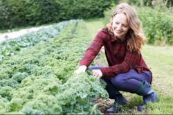 Nagy az igény az organikus élelmiszerekre