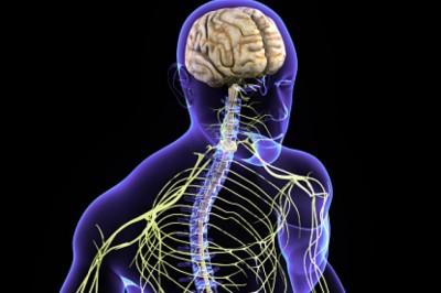 Új lehetőségek a perifériás idegrendszeri megbetegedések diagnózisában