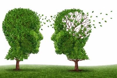 Új magyar sikerek az Alzheimer-kutatásban