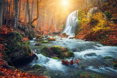 Tények, amiket sokan nem tudnak az élet vizéről