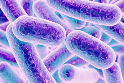 Győznek a fertőzések: hatástalanok az antibiotikumok