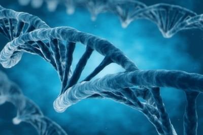 Kiküszöböli a génhibákat a legújabb génszerkesztő technológia