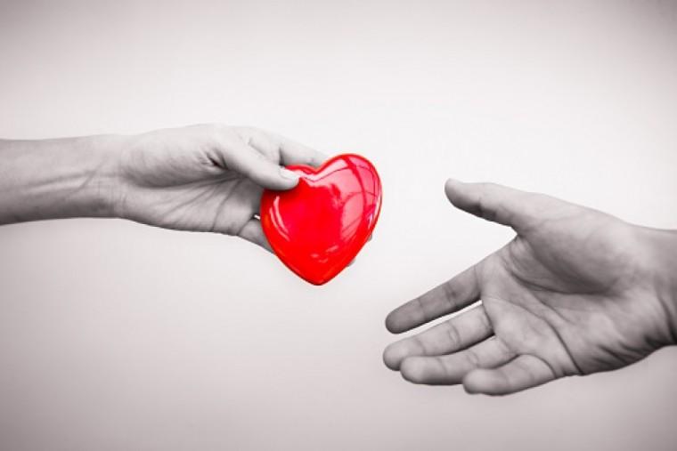 Elvégezték az ötszázadik szívtranszplantációt Magyarországon