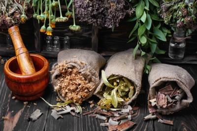 Eltűnnek a gyógynövények? A NAK szerint nincs ok az aggodalomra