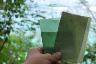 Itt az ehető, vitamindús bioplasztik csomagolóanyag