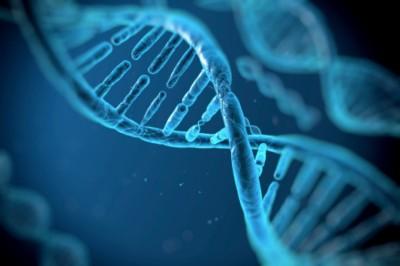 Rokonok génmintáiból rakták össze egy 1827-ben meghalt nemzeti hős DNS-ét