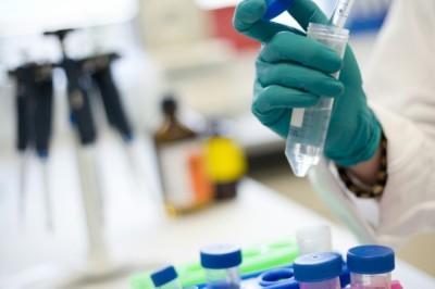 Újabb együttműködés rákellenes gyógyszerek kifejlesztésében