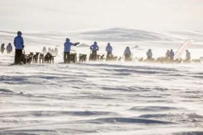 Kutyaszánon szelte át a sarkvidéket a 25 éves magyar lány