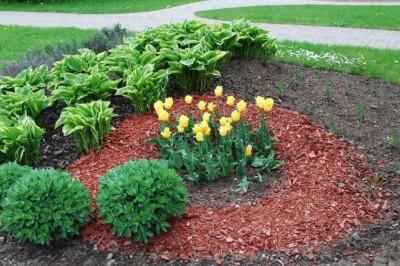 5+1 praktika a csodálatos kertért